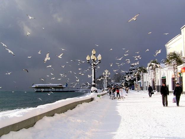 Зимние каникулы в Крыму 2017: отдых в Крыму зимой — Новый Год 2017